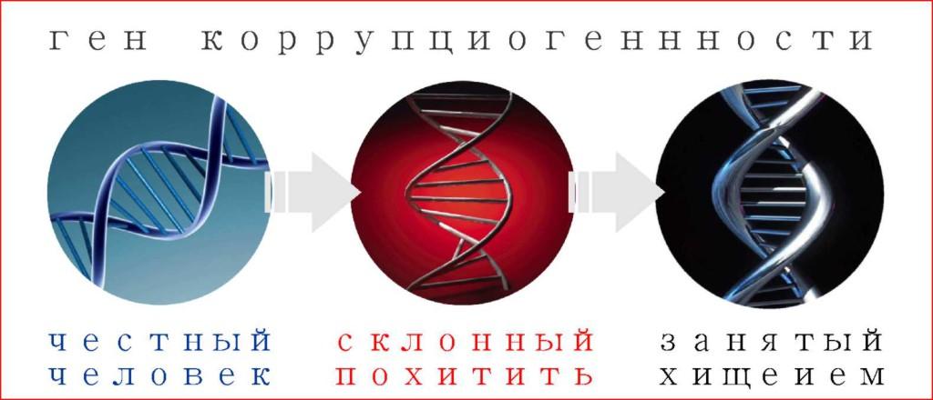 Ген коррупциогенности